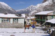 Langtang Goasinkunda Pass