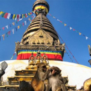 Pilgrimage Package Tours for Nepal