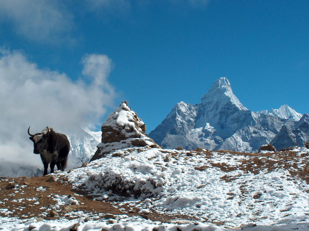 Instant Everest (EBC) Trekking, Everest base camp trekking