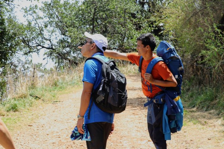 Hiking to phulchowki - Nature Trail, Travels & Tours, Trekking & Expedition