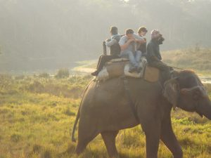 chitwan world heritage site