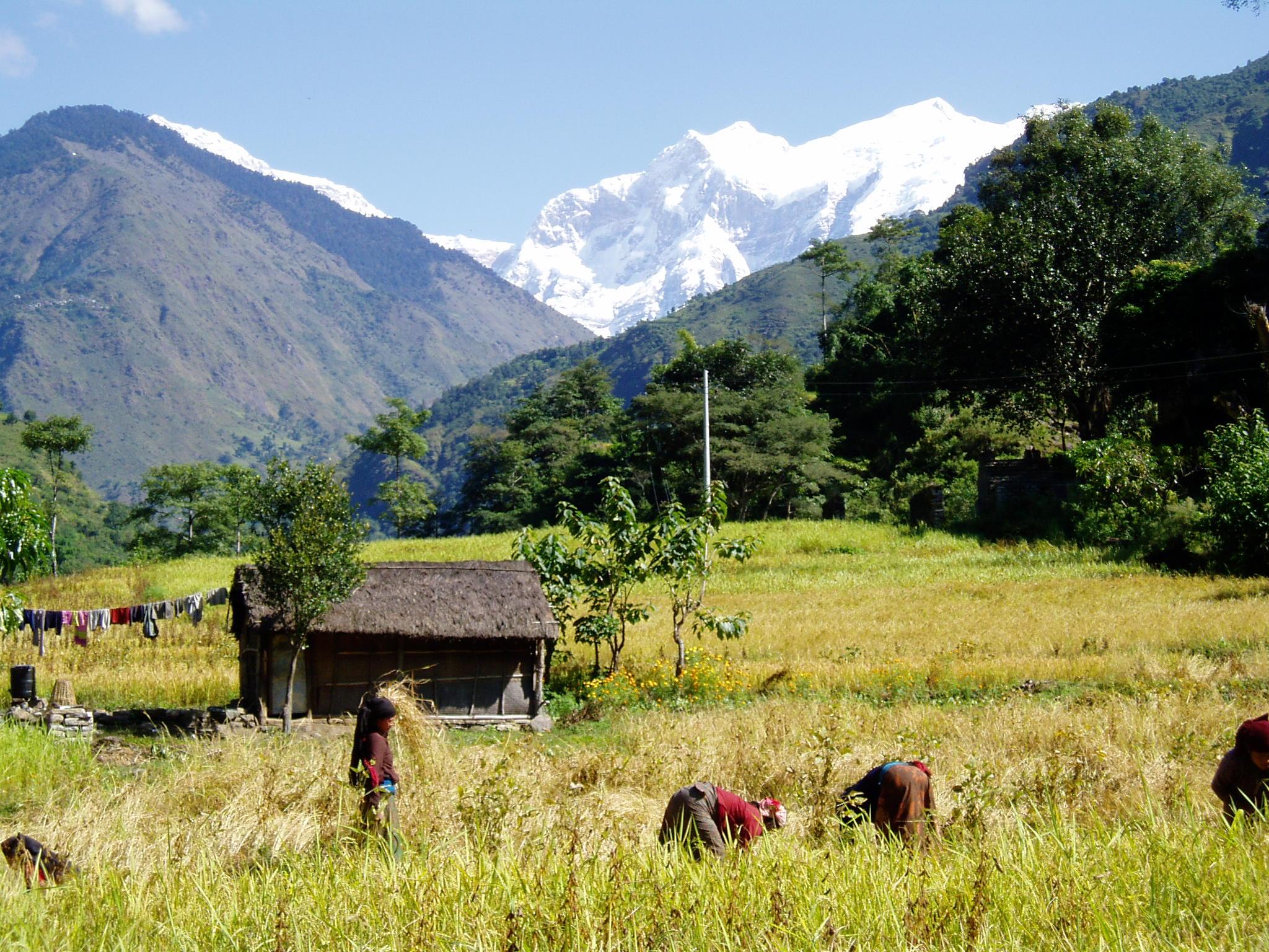 Ghorepani - Places around Annapurna Base Camp, annapurna base camp places to stay, accomodations around ABC trek, trekking to annapurna base camp