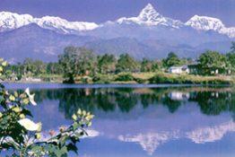 cat-nepal-tour
